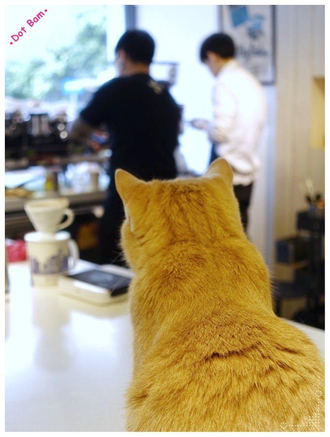 【Milkglider牛奶滑翔機 ⋈ 台北松山區 捷運中山國中站】二訪依舊迷人的拿鐵拉花,少女系彩紅千層回味無窮不限時咖啡廳 28.JPG