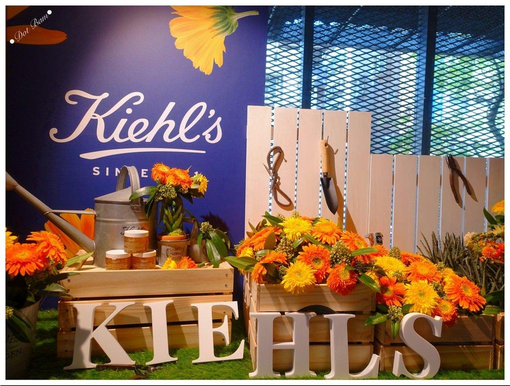 保養|KIEHL'S 契爾氏金盞花蘆薈精華保濕凍膜,只要五分鐘,強效修護,立即水嫩你的肌膚